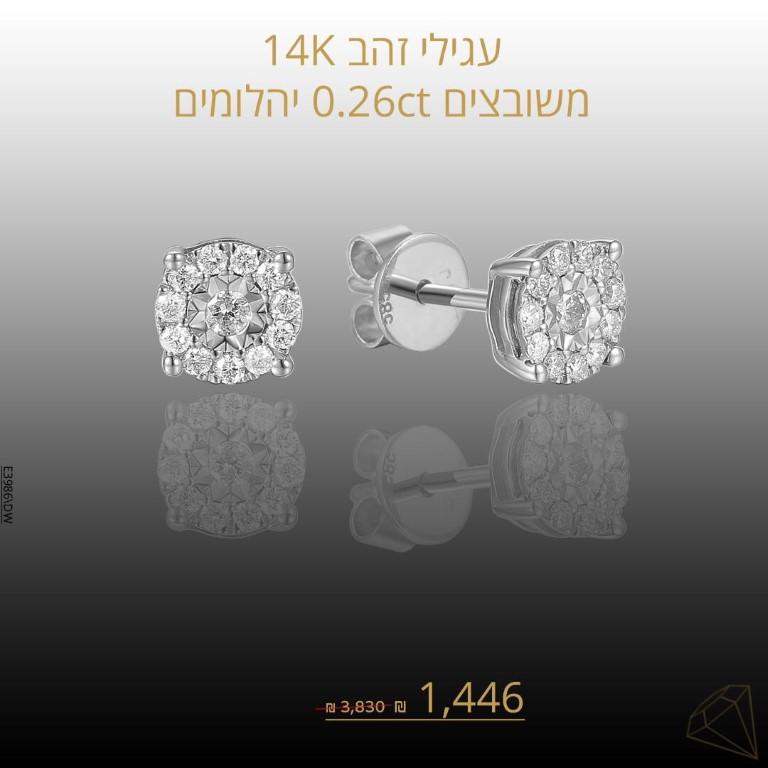 מבצע עגילים פרינס זהב לבן