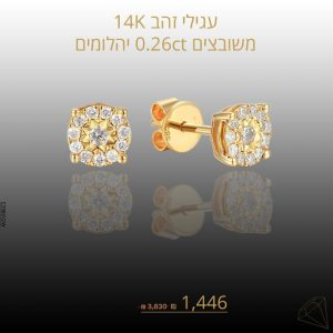 מבצע עגילים פרינס זהב צהוב